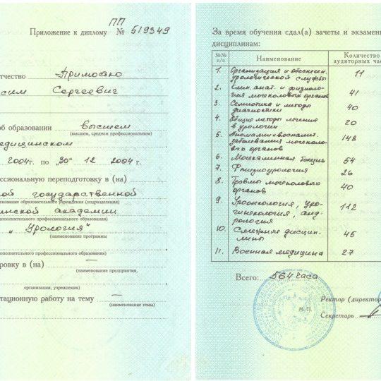 prilozhenie-k-diplomu-pp-519349