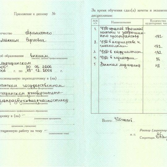 prilozhenie-k-diplomu1-pp-519349