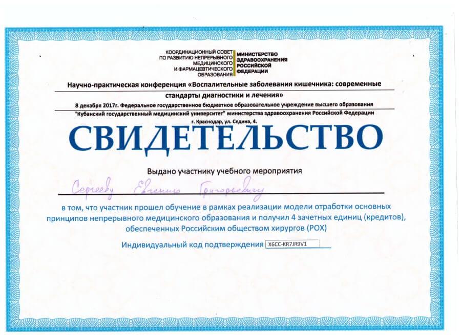 Свидетельство Сергеева Е.Г